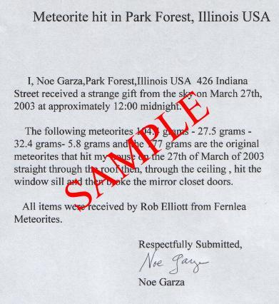 Garza Stone Park Forest Meteorite